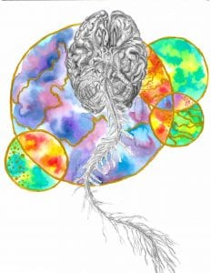 Ellis_brain
